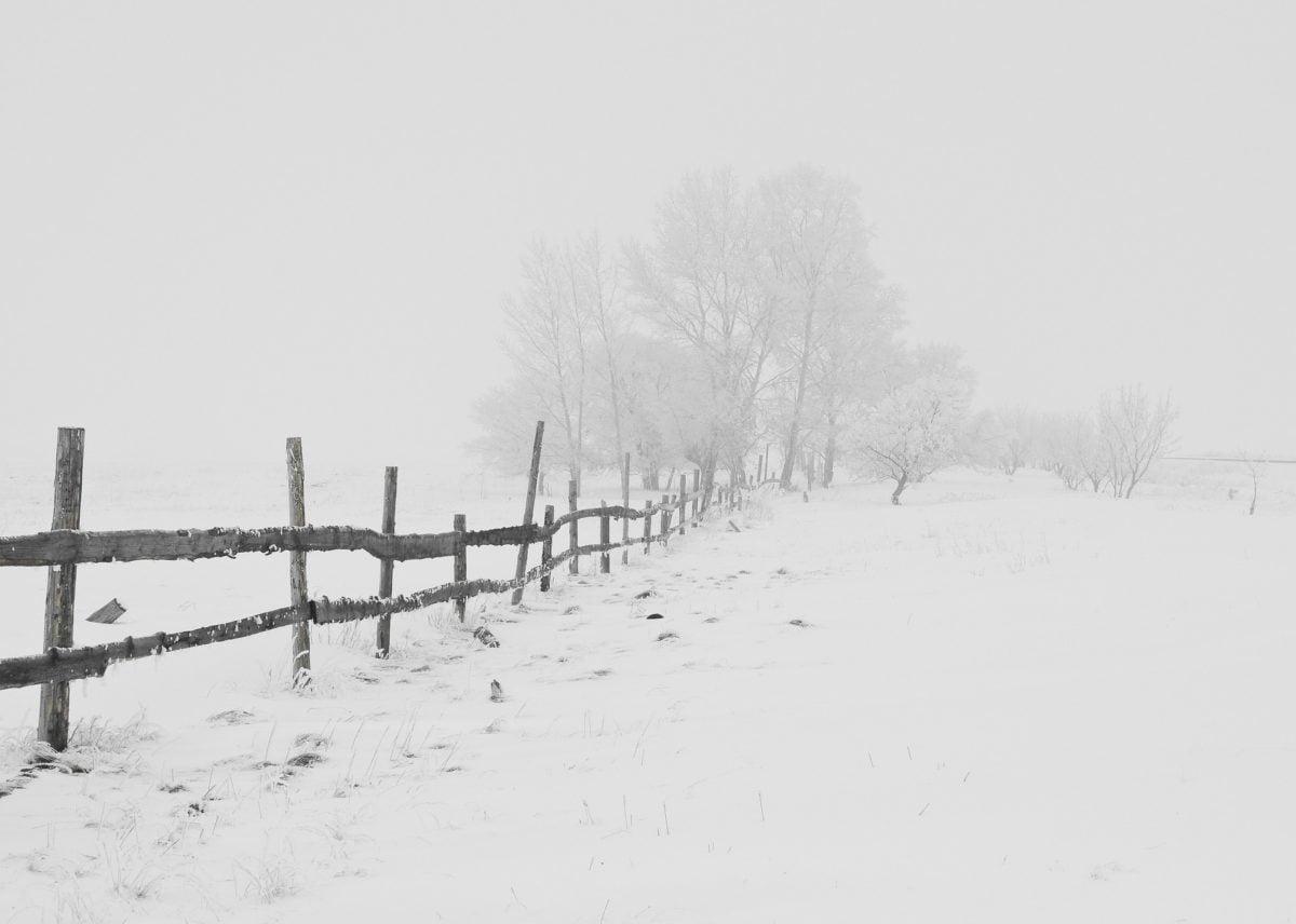 Lysterapilamper bekæmper vinterdepression