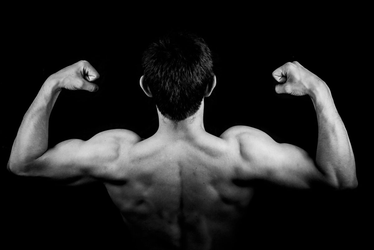 Hvorfor er BCAA de vigtigste aminosyrer?